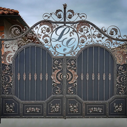 Luxury wrought iron gate in a family house