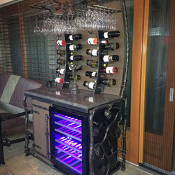 Luxury wine collection with a fridge - a modern furniture