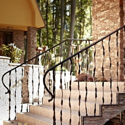 A wrought iron railing - entrance stairs