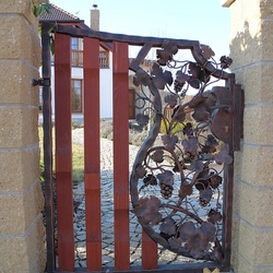 A luxury gate - a vine in the coat of arms - A hand forged gate with a wood
