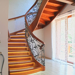Spiral wrought iron railings combined with wood - Lily pattern